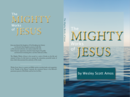 The Mighty Works of Jesus - Book